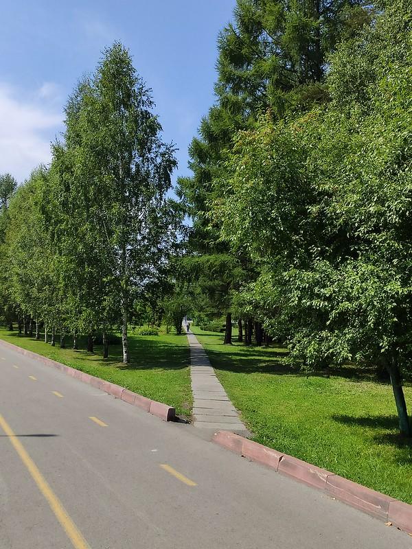 Прокопьевск - Дорожка в Парке Победы