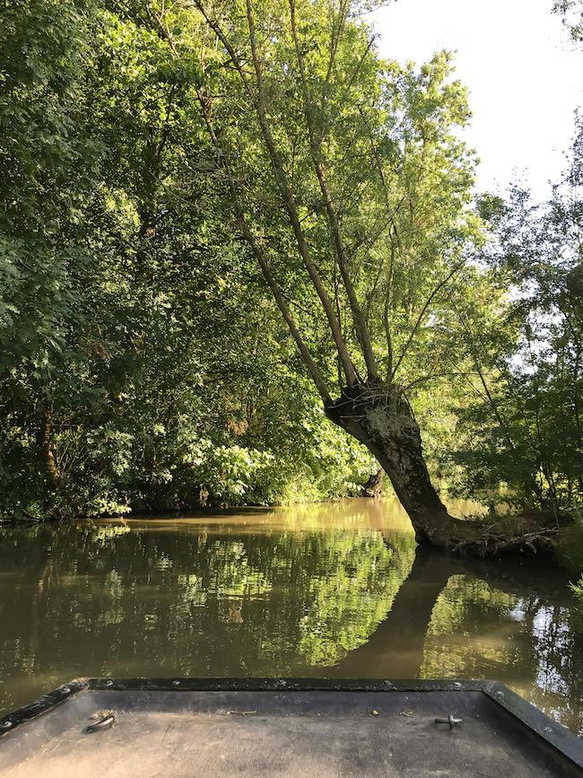 visiter-marais-poitevin-venise-verte-barque-city-guide-tourisme-voyage-blog-mode-la-rochelle-8