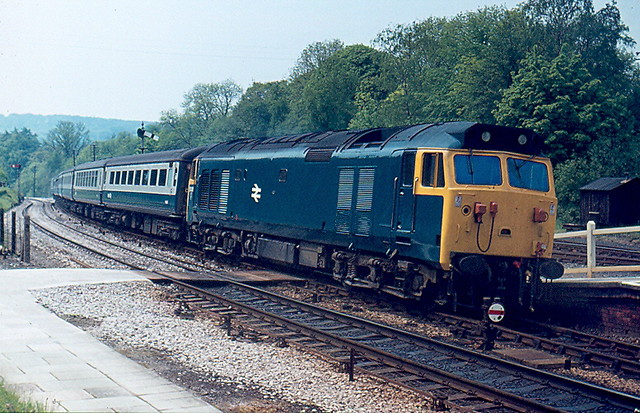 50005 by Andy Sutton