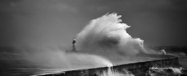 The Perfect Storm, Newhaven