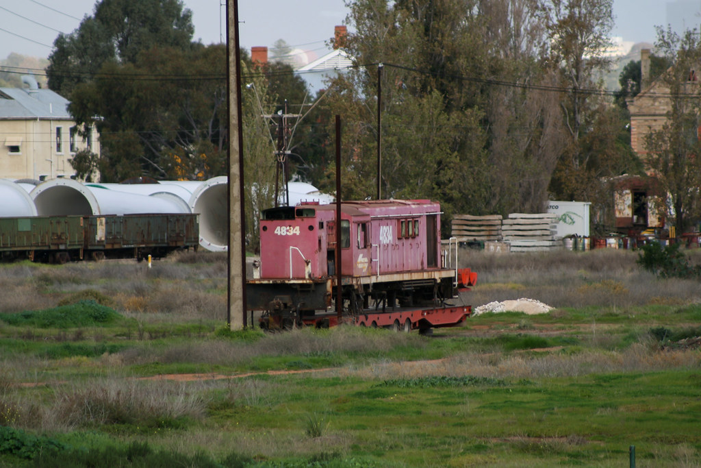 4834 waits on scrapping by David Arnold