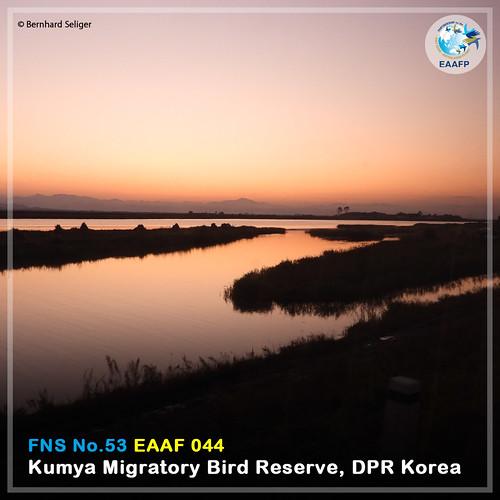 EAAF044 (Kumya Migratory Bird Reserve) Card News