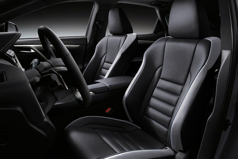 2021-Lexus-RX-Black-Line-6