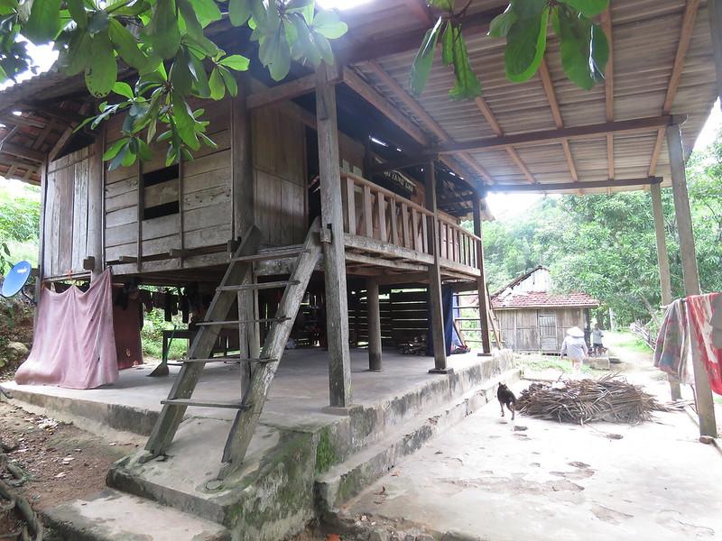 Phat gao dong bao Chut