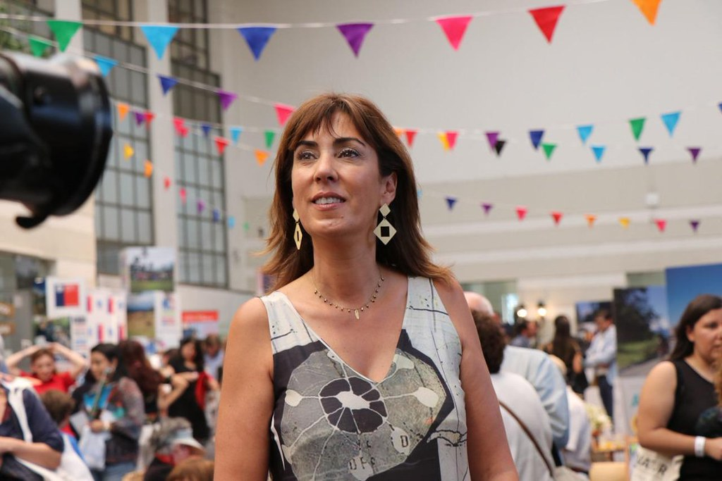 Mónica Zalaquett: Nueva ministra de la mujer se opuso al aborto terapéutico y postnatal
