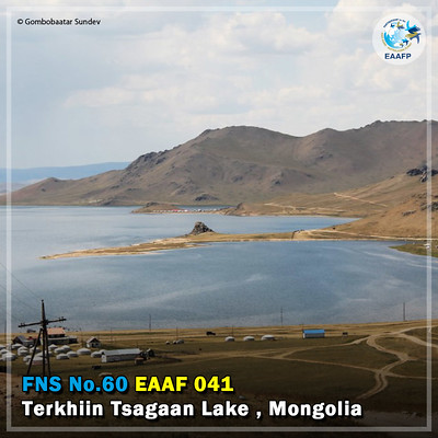 EAAF041 (Terkhiin Tsagaan Lake) Card News