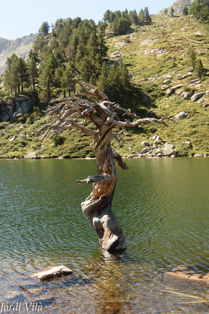 Lac de Beciver