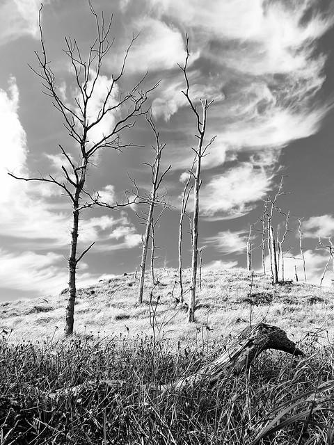 Deadwood hill  explore 27-08-2020