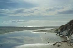 Rarawa Beach Estuary