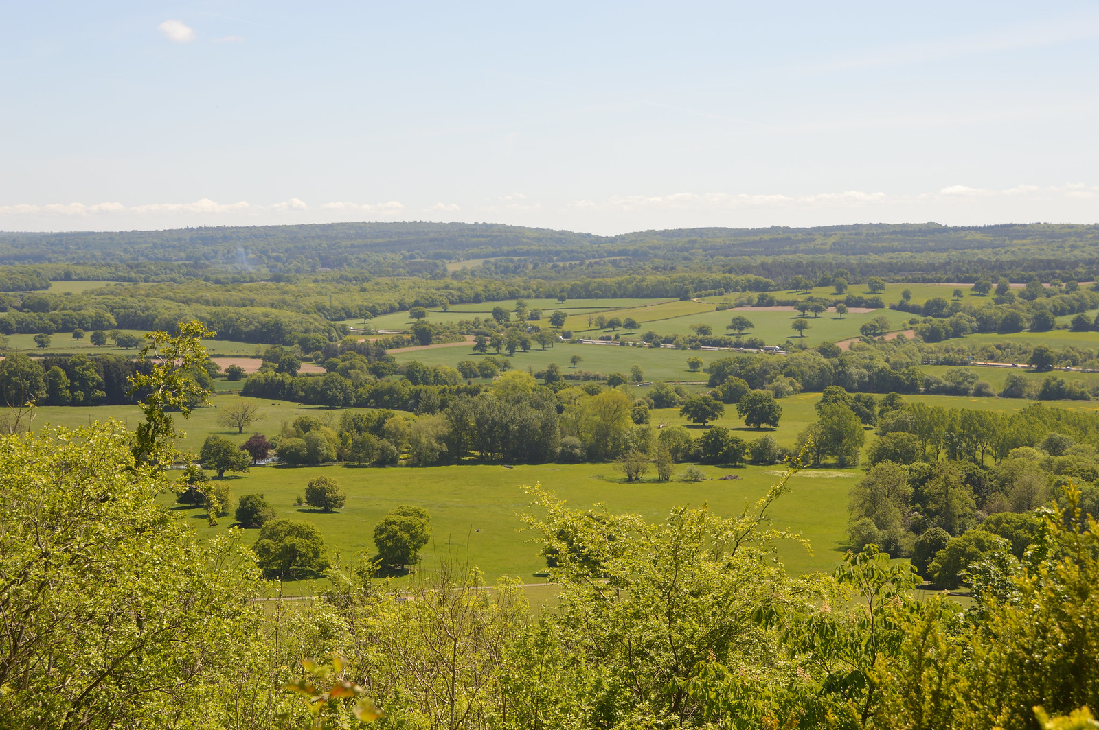Titsey Estate view to High Weald
