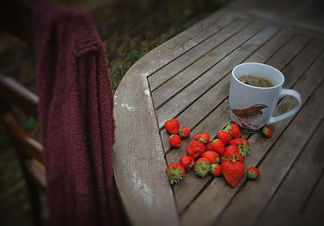 Pause fraises...