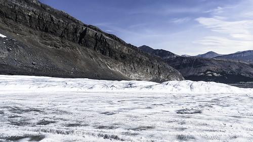 Promenade sur le champ de glace Columbia