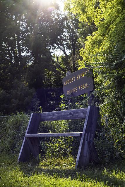 Locust Ravine Bench
