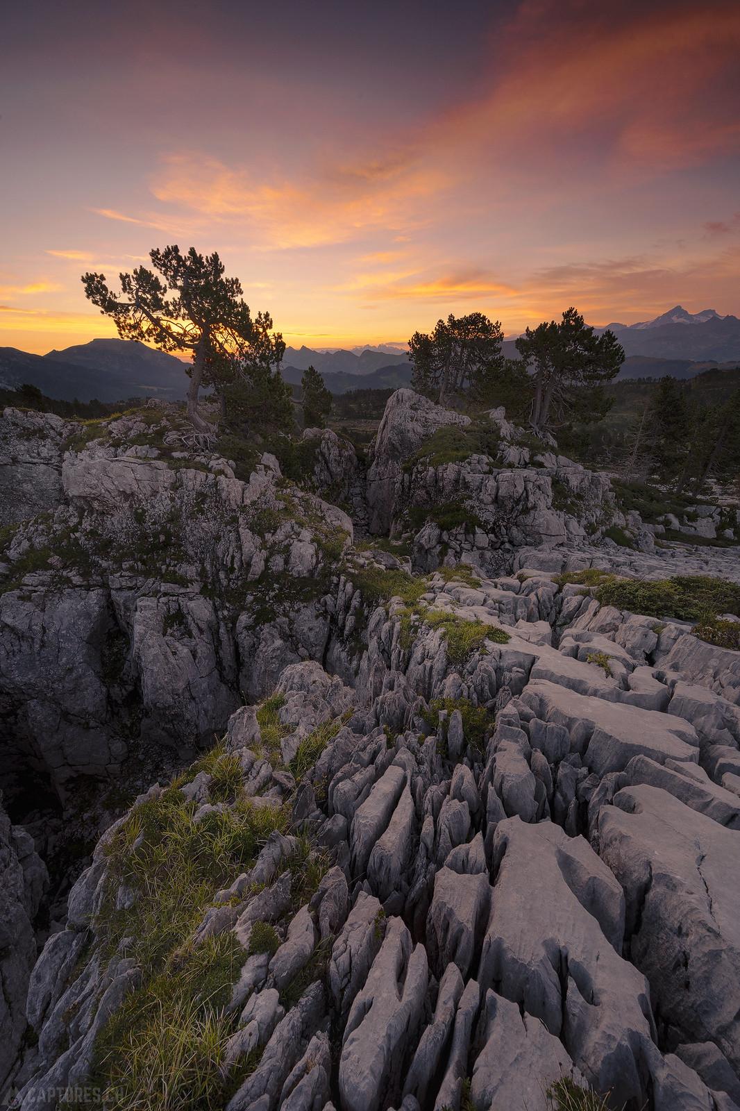 Cracked terrain in the morning light - Seefeld
