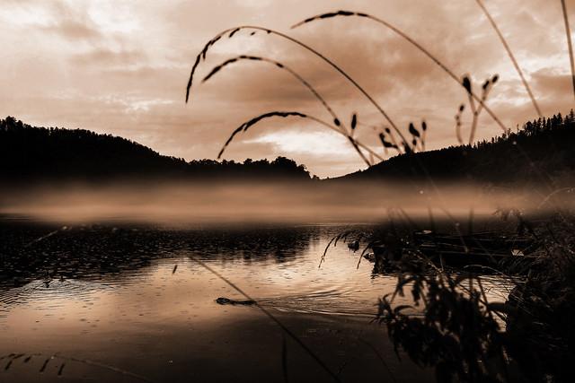 A foggy day on the Moldau river