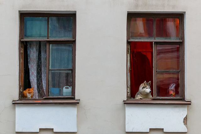 Different Neighbors, Different Windows — Разные соседи, разные окна
