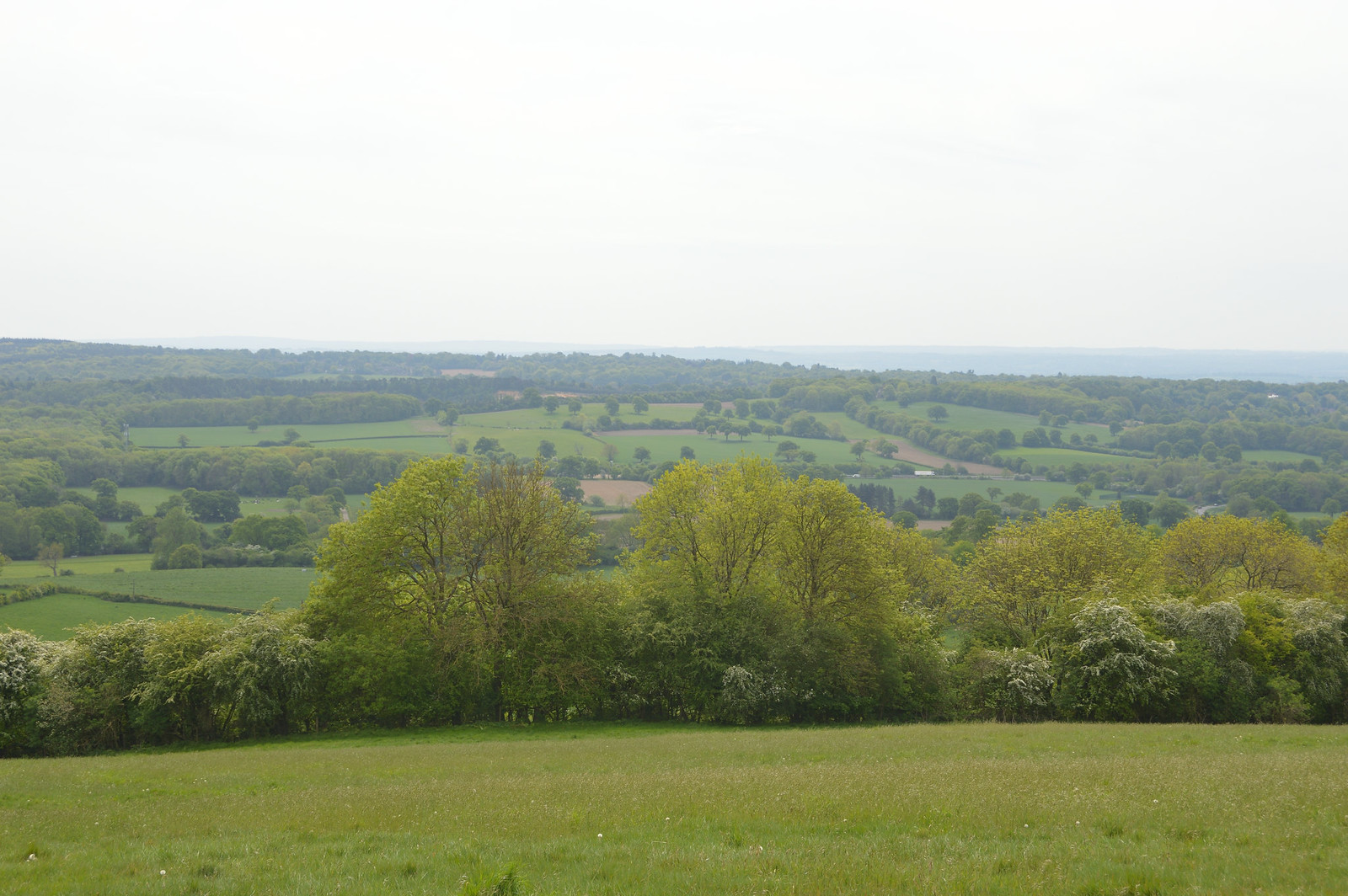 Tatsfield Clarks Lane Farm view to High Weald and South Downs