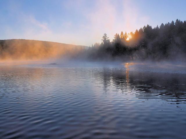 misty glow on the lake