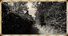 [NT] Anne Hathaway's Cottage [05] Aug 2020