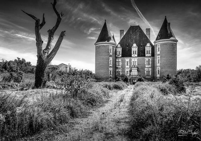 Le château de Saint-Elix à l'abondon