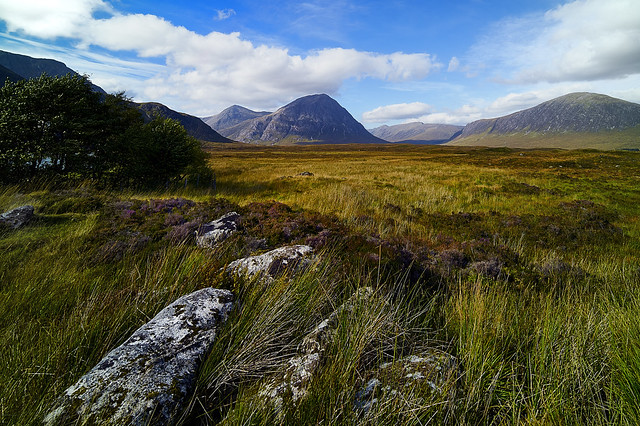 Bright Autumn at Buachaille Etive Mòr - Wide