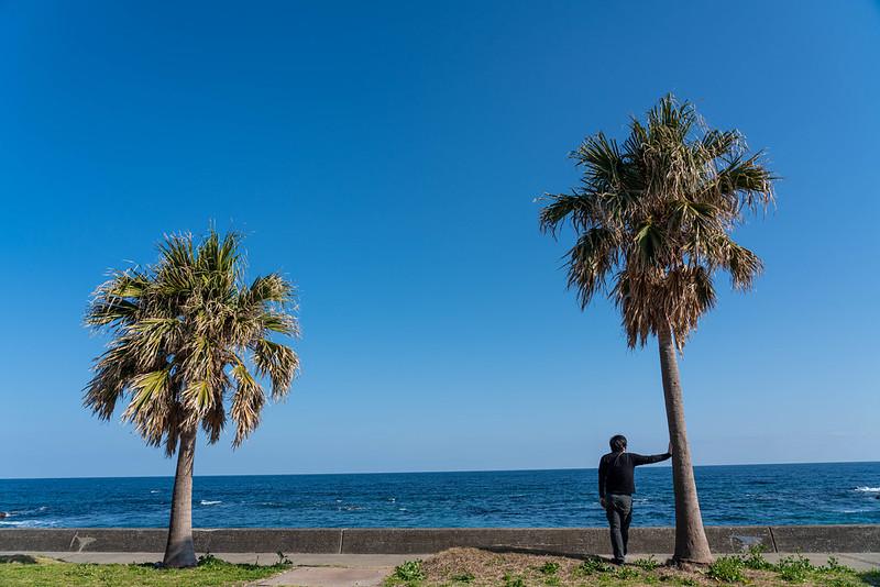 和田浦の海岸