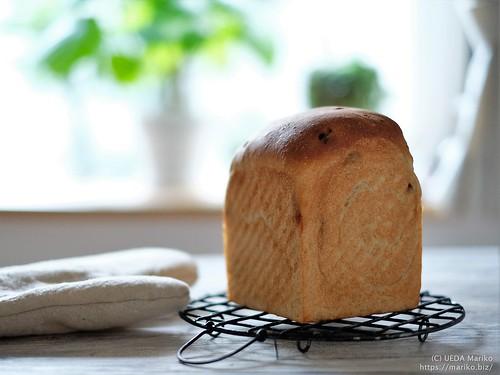 ライ麦いちじくパン 20200826-DSCT8632 (3)