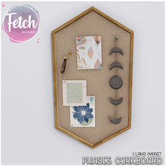[Fetch] Phases Corkboard @ Fifty Linden Friday