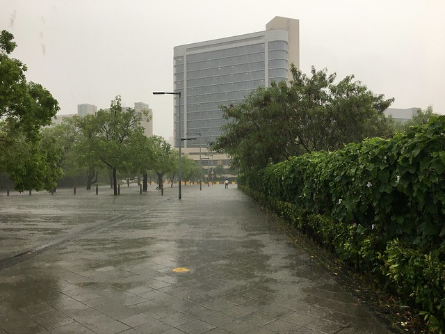 回頭想想手機受潮應該是在這片大雨之中遇到的吧 T_T