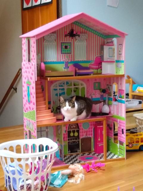 Mercutio in Barbie House