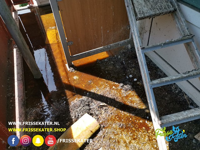Duivenpoep schoonmaak / Pigeon dropping cleaning 49 - Schoonmaakbedrijf Frisse Kater