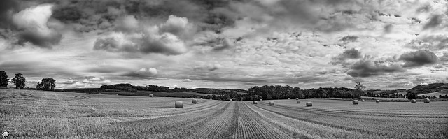 Farm, Kilmany, Scotland