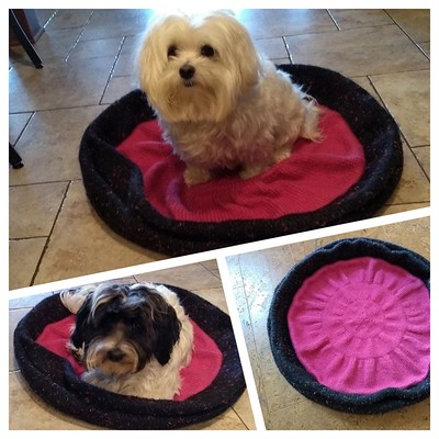 Test knit knit by Rita - Bed for a Pet - by (@knittingilove) Barbara Nalewko - Coupon code Pet20 is good until August 29th.