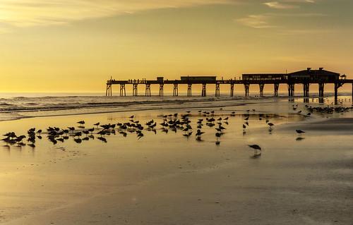 sunrise beach daytona florida goldenhour nikon d5000 nikond5000 travel daytonabeach