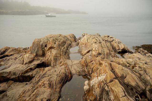 Fog On Rocky Coastline