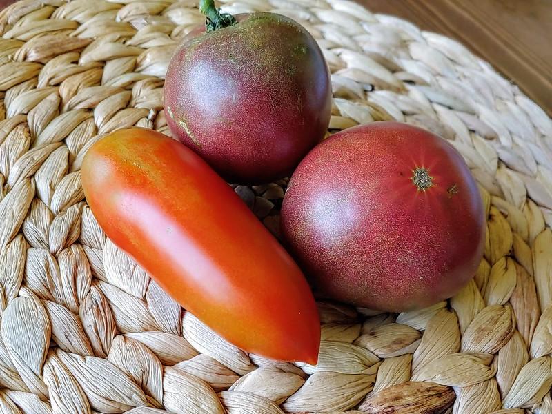 Comparing color of Cherokee Purple to Lil Mama Tomato