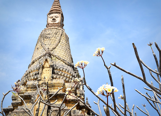 White blossoms by the Buddha, Oudong, Cambodia