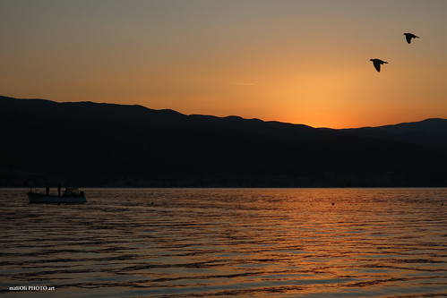 sea sun down sunrise boat birds golden canon croatia hrvatska europe