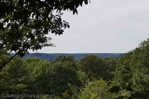 Views from the third viewpoint along the Golden Eagle Trail, Tiadaghton State Forest, Pennsylvania