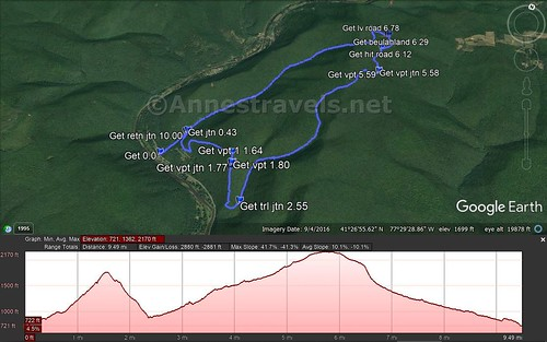 Visual trail map and elevation profile for the Golden Eagle Trail in Tiadaghton State Forest, Pennsylvania
