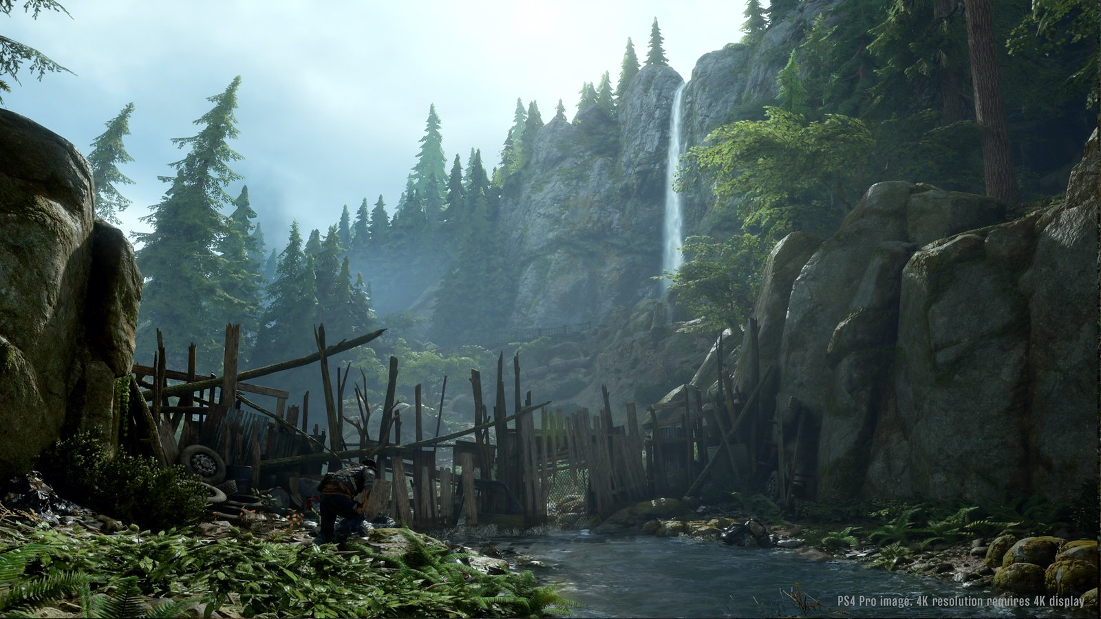 Video Conference Backgrounds - Days Gone