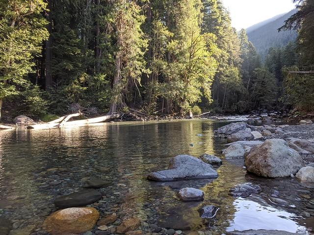 Ohanapecosh River, Morning