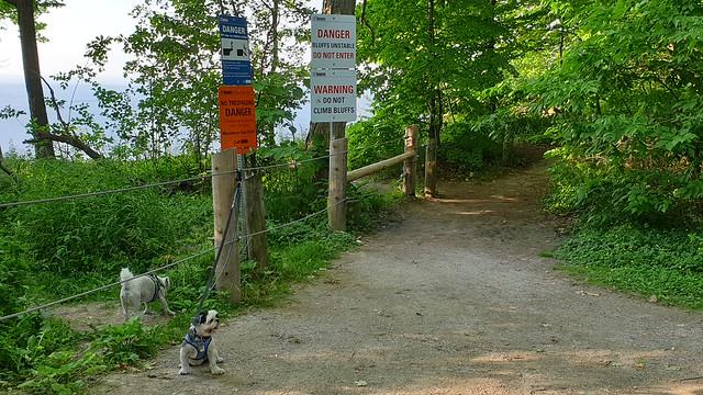 2020 07 03_Upper Trail Scarborough Bluffs