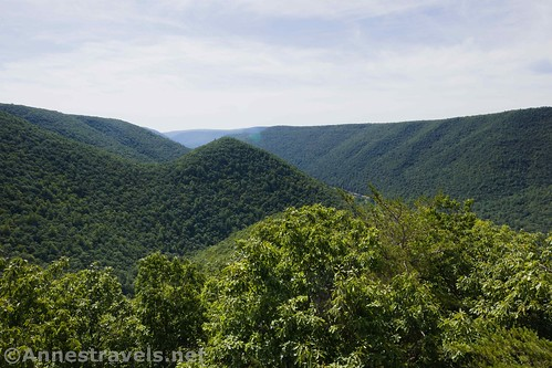 Views from the Raven's Horn along the Golden Eagle Trail, Tiadaghton State Forest, Pennsylvania