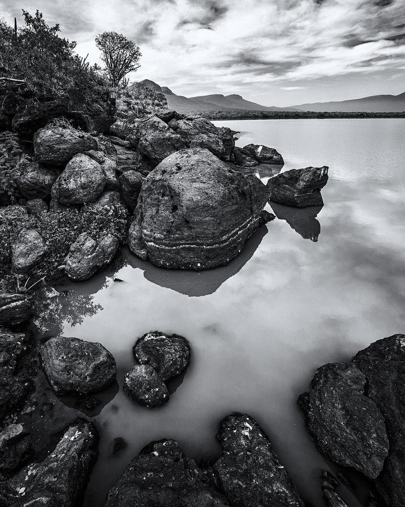Landscape Mono