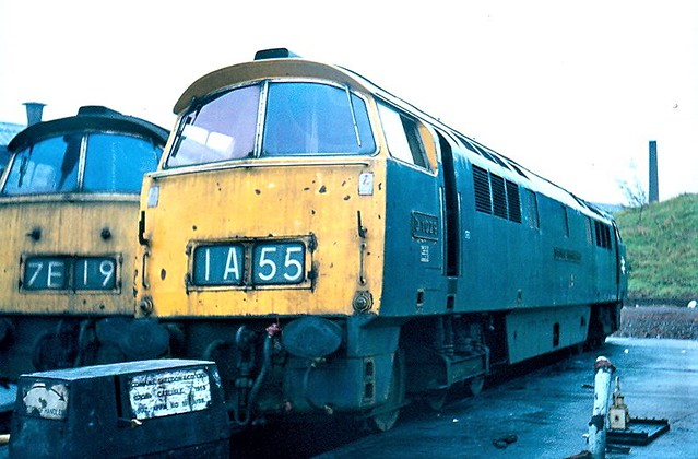 D1029 by Andy Sutton