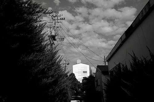 niigata monochrome 88