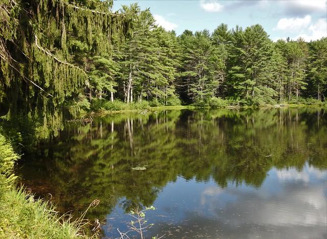 Hawley Reservoir ~ Pelham