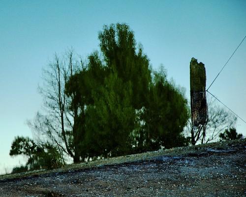 bobwall btwgf alviso reflection landscape