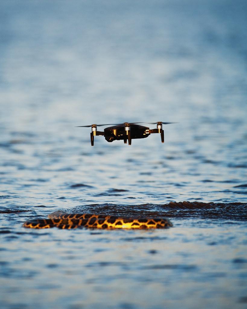 Drone e Sucuri